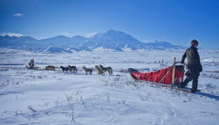 Visiting Alaska in Winter Is a Must